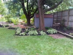 Backyard By Shed 2